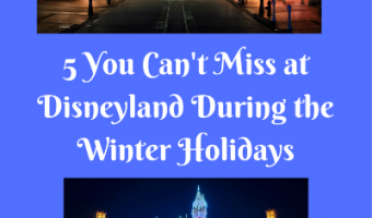 5 Things You Shouldn't Miss at Disneyland During the Winter Holidays