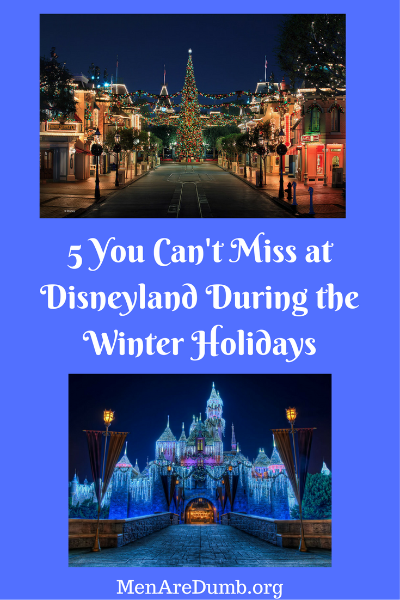 Disneyland during the Winter holidays